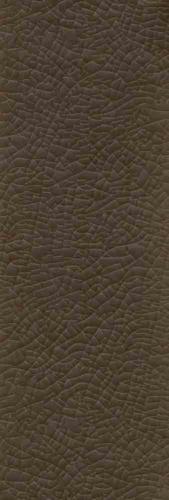 0294-BROWN DESERT